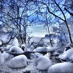 Ясная и холодная погода в этот день предвещала засушливое лето (Фото: kari liimatainen, Shutterstock)