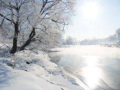 Если деревья покрывались инеем — это предвещало тепло (Фото: Zavodskov Anatoliy Nikolaevich, Shutterstock)