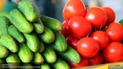 710x398_1452154726_ovoschi_pomidory_ogurcy1-412x231