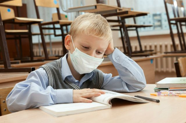 Все школы Воронежа с26января будут закрыты накарантин из-за гриппа