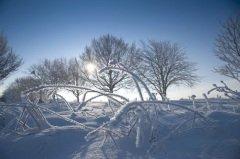 Возвещает пробуждение жизненных сил, заснувших во время Зимней Ночи (Фото: jarowan power, Shutterstock)