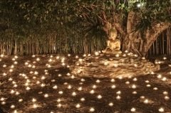 Это день признательности Будде за его учение, принесенное людям (Фото: 501room, Shutterstock)