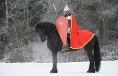 Этот день наши предки считали днем Воинской славы (Фото: Abramova Kseniya, Shutterstock)