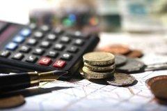 День профессионального праздника работников налоговой службы (Фото: Ronen Boidek, Shutterstock)