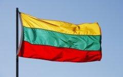 Литва празднует главный государственный праздник (Фото: Jonathan Larsen, Shutterstock)