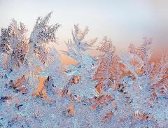 Студеный день — снова шубу надень (Фото: yxowert, Shutterstock)