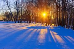 Чем холодней неделя, которая начинается с этого дня, тем теплей будет в марте (Фото: S.Borisov, Shutterstock)