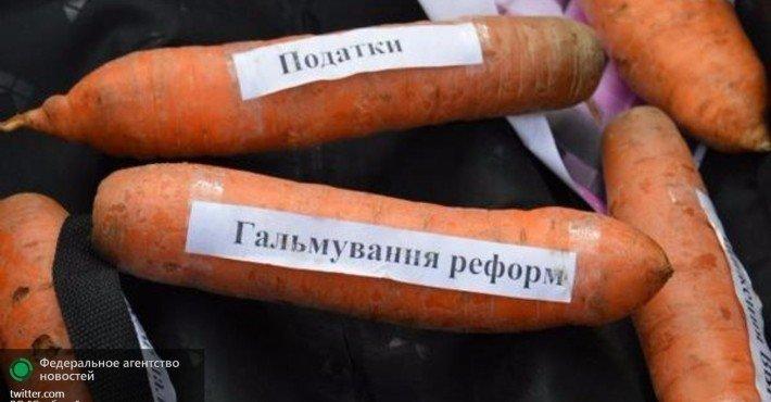 orig-710x4001455373542morkovmorkovka-dlya-yacenyukayacenyuk-1455373408