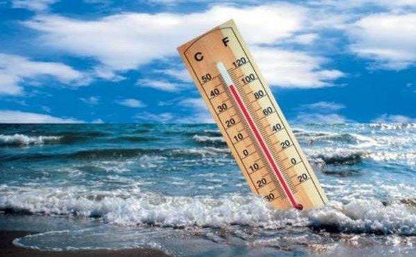 uchenye-predlozhili-uluchshit-klimat-otkazavshis-ot-myasa-i-molochki