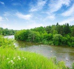 Международный день рек — в защиту больших и малых рек (Фото: irin-k, Shutterstock)