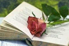 Возрождая извечную традицию живого звучащего поэтического слова... (Фото: Graeme Dawes, Shutterstock)