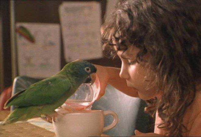 Фото: кадр из фильма «Поли»