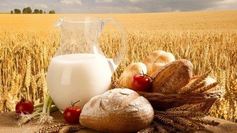 Саратов может дать больше продовольствия
