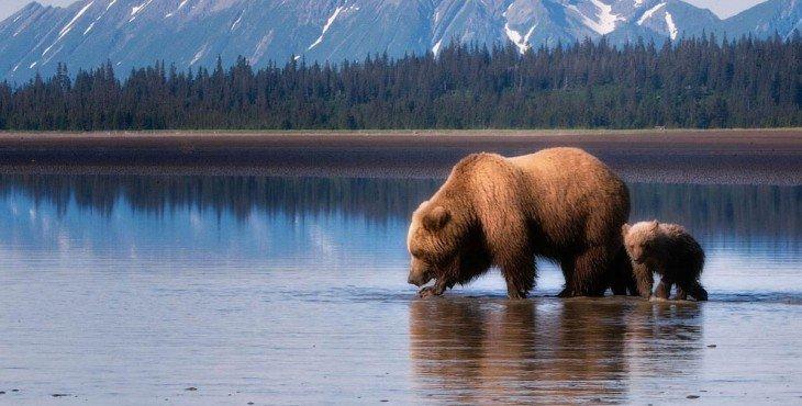 Аляска- собственность США?