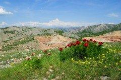 Природа и окружающая среда — невосполнимое богатство (Фото: VeryBigAlex, Shutterstock)