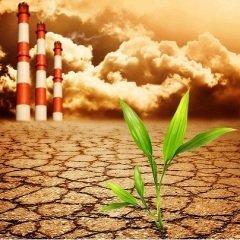 Право людей на жизнь в безопасной окружающей среде гарантировано Конституцией РФ (Фото: Nejron Photo, Shutterstock)