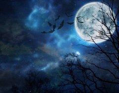 В средние века существовало поверье, что Вальпургиева ночь является ночью пиршества ведьм (Фото: Molodec, Shutterstock)