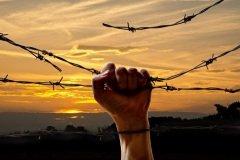 День освобождения от фашизма (Фото: Vaclav Mach, Shutterstock)
