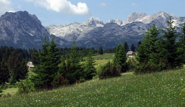 В Черногории хотят отдать немного земли России
