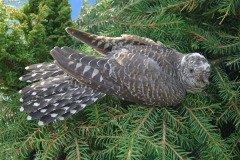 Если кукушка кукует на сухом дереве, то быть заморозку (Фото: Maksimilian, Shutterstock)