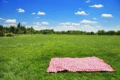 В этот день крестьянки выходили на поле с холстом (Фото: Sofiaworld, Shutterstock)