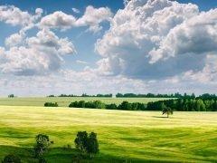 На Руси в этот день примечали направление ветра (Фото: vhpfoto, Shutterstock)
