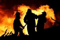 Огонь не пройдет! (Фото: Four Oaks, Shutterstock)