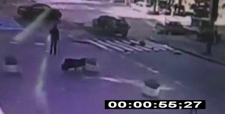 СМИ: Камера зафиксировала момент закладки взрывчатки под машину Павла Шеремета