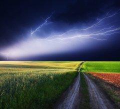 Главный славянский бог — громовержец Перун (Фото: leonid_tit, Shutterstock)