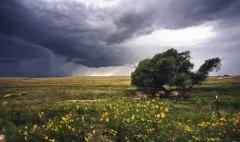 Стрибог — славянский бог ветра (Фото: Rudy Lopez Photography, Shutterstock)
