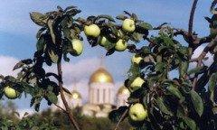 Великий праздник Преображения Господня называют еще Яблочным Спасом