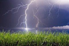 В этот день часто случались грозы с молниями (Фото: leonid_tit, Shutterstock)