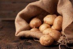 На Анну поспевал первый картофель (Фото: Komar Maria, Shutterstock)