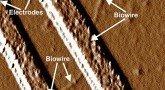 Бактерий научили делать электрические провода