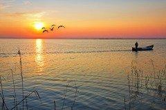 Дикие гуси в это время улетали в теплые края, а охотники выходили на последний промысел (Фото: kesipun, Shutterstock)