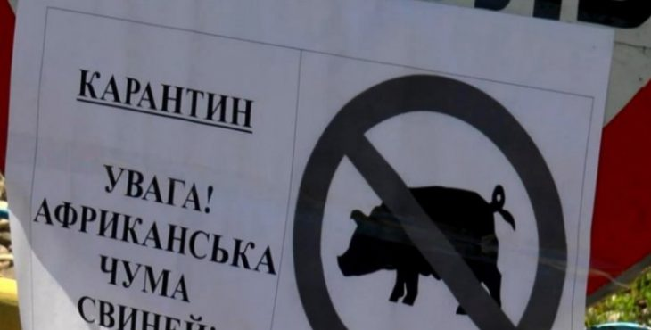 Американцы запустили в Украине африканскую чуму?