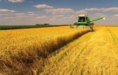 Земельные угодья России представляют собой огромную производительную силу (Фото: prudkov, Shutterstock)