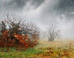 На Руси в этот день судили о предстоящей погоде (Фото: Beata Becla, Shutterstock)