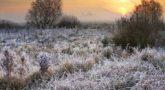 В это время приближение зимы становилось все более ощутимым (Фото: leonid_tit, Shutterstock)