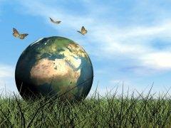 Этот День призван привлечь внимание человечества к проблеме сохранения среды обитания фауны планеты Земля (Фото: Elenarts, Shutterstock)