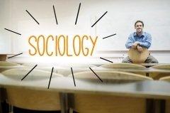 14 ноября отмечается День социолога (Фото: wavebreakmedia, Shutterstock)