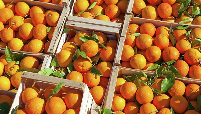 Вмагазины России вернулись мандарины илимоны изТурции