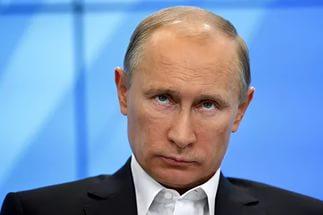 Путин против живодёрства – грядёт ужесточение наказания