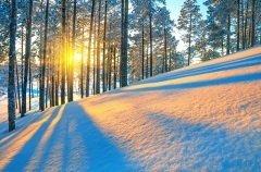 С увеличением светового дня и усилением солнца ослабевает действие темных сил (Фото: Leonid Ikan, Shutterstock)
