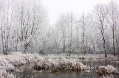 Славяне обязательно ходили на болото, чтобы показать, что не боятся Марены (Фото: Petr Baumann, Shutterstock)