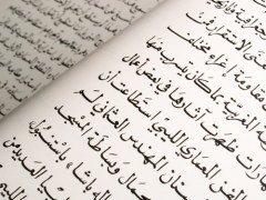 Арабский язык входит в число официальных и рабочих языков Генеральной ассамблеи ООН (Фото: Keith Wheatley, Shutterstock)