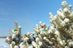 Этот день считается в скандинавских странах днем окончания Рождества (Фото: NATALIIA MAKAROVA, Shutterstock)