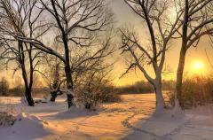 Вскоре стоило ждать морозов... (Фото: Jaroslaw Grudzinski, Shutterstock)