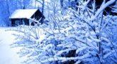 Согласно народным приметам, погода в этот день показывала, каким будет март (Фото: akva, Shutterstock)