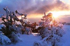 Емельян зимний обещает скорую смену погоды (Фото: Galyna Andrushko, Shutterstock)